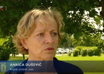 Ankica Dusevic