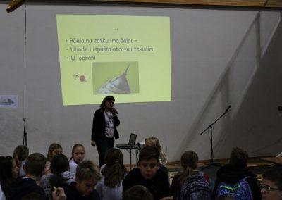 Zorica Šain predavanje za škole